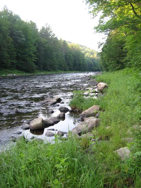 1311170887-River.jpg
